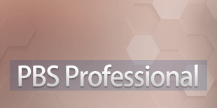 PBS Professional
